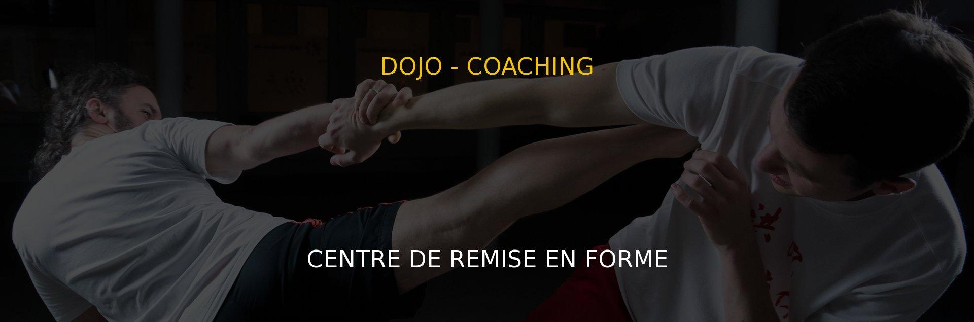 L'école d'arts martiaux qui agrège et synthétise différentes disciplines : self défense, ju-jitsu, kobudo, arts martiaux mixes...